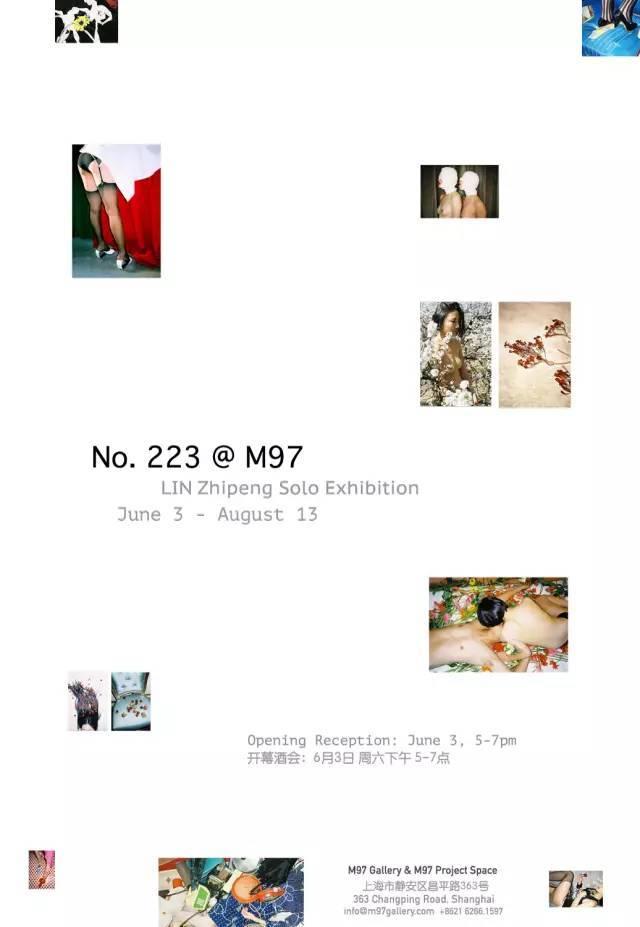 No.223.jpg#asset:11535